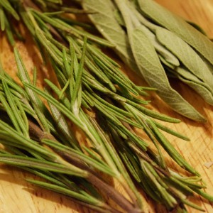 RBH_Herbs