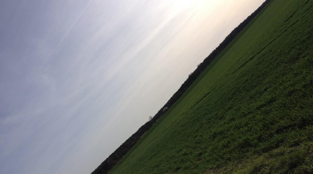 BB_ horizont6