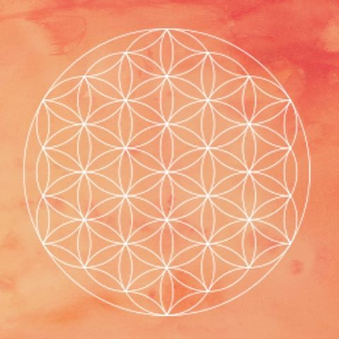The flower of life  Recently katrinbongard came across thehellip